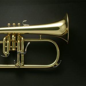 Yamaha 8310Z Custom Z