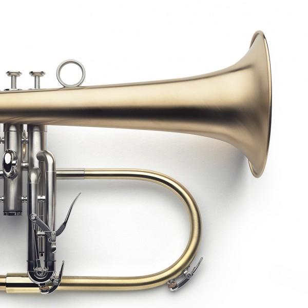 raw brass bell, palladium-plated corpus